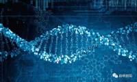 CRISPR/Cas9基因编辑