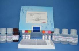 猪繁殖与呼吸综合征病毒抗体检测试剂盒