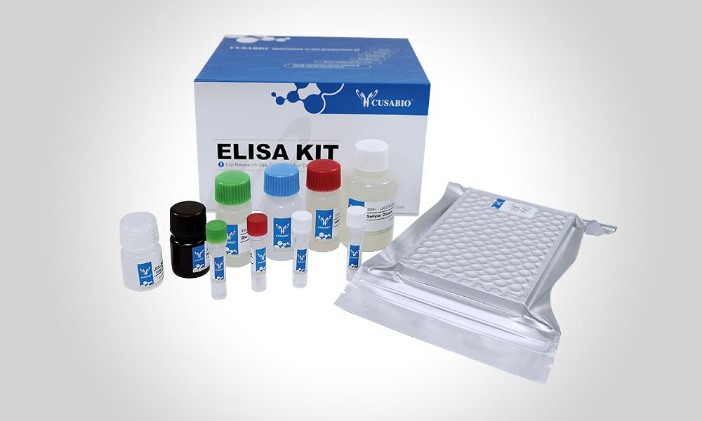 大鼠内皮细胞特异性分子1(ESM1)ELISA kit Rat Endothelial cell-specific molecule 1(ESM1) ELISA kit