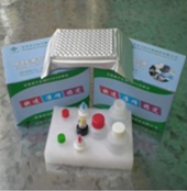 羊口蹄疫病毒非结构蛋白3ABC抗体检测试剂盒(间接法)