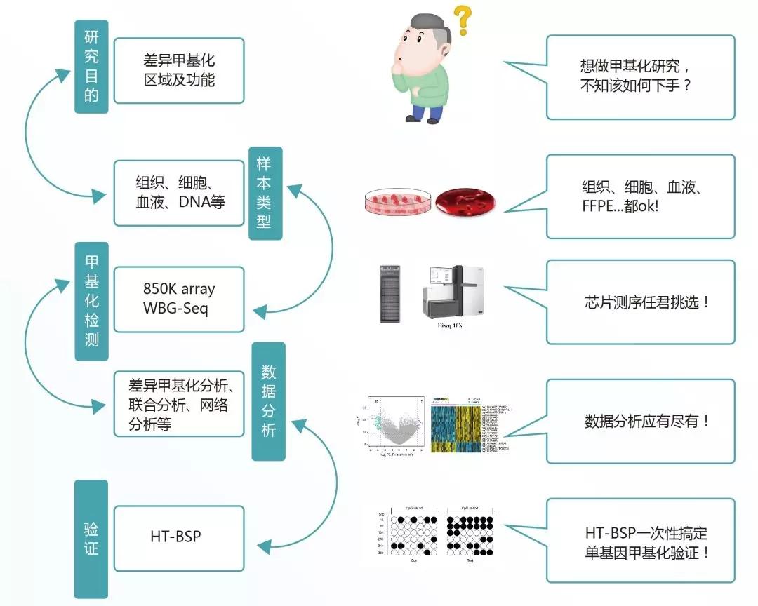 中康博生物推出DNA甲基化检测、分析、验证三合一服务!
