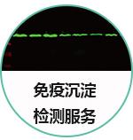 免疫沉淀(IP)技术服务