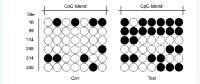 BSP单位点甲基化检测(高通量测序版)