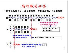 长链脂肪酸检测