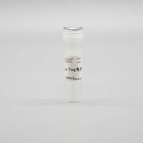 LF308 His-Tag兔多克隆抗体