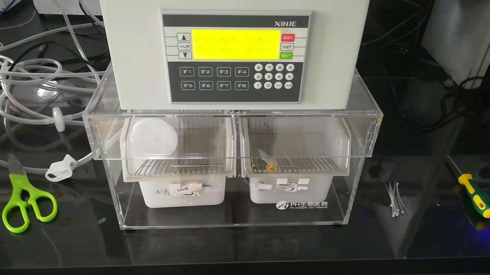 小鼠低氧培养箱