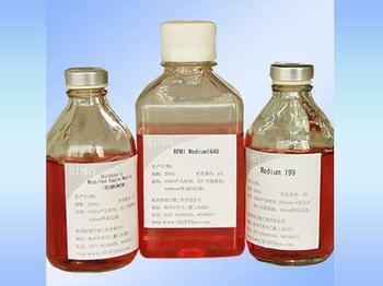 含100ml 缓冲蛋白胨水(BPW)均质袋图片