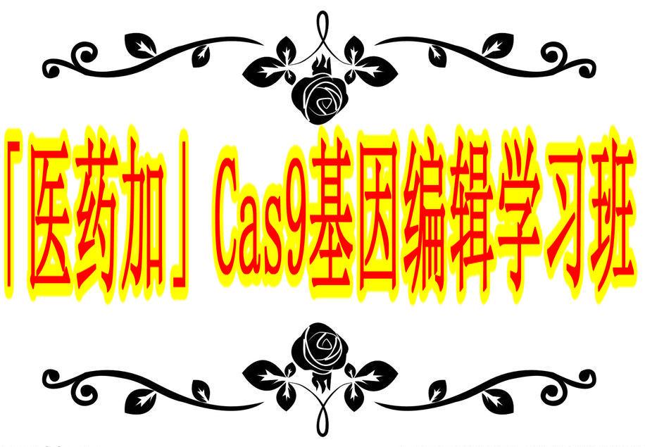 「医药加」Cas9基因编辑技术学习班