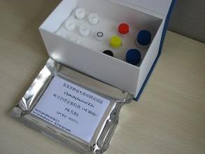 Chuzan Virus中山病毒RT-PCR试剂盒说明书
