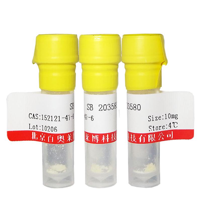 转录抑制剂和轴蛋白稳定剂(XAV-939)