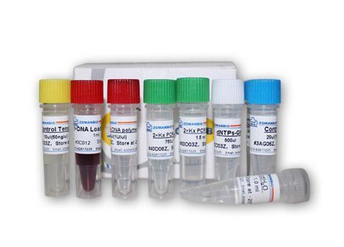 Influenza Virus A甲型流感病毒H3N8亚型RT-PCR试剂盒费用