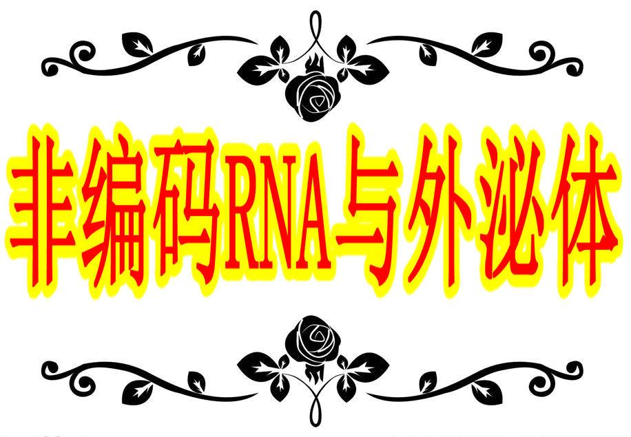 「医药加」非编码RNA与外泌体学习班