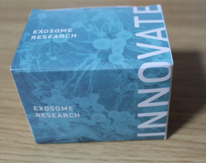 SBI, EXOQ20A-1, ExoQuick exosome precipitation solution (20 ml), 300 reactions   exosome沉淀试剂盒