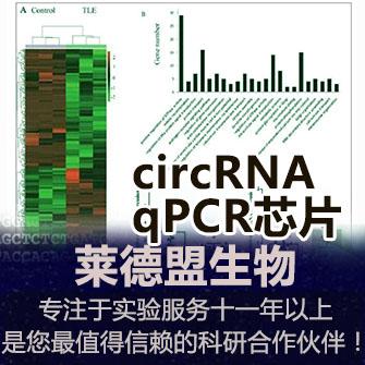 circRNA qPCR芯片检测(环状RNA)