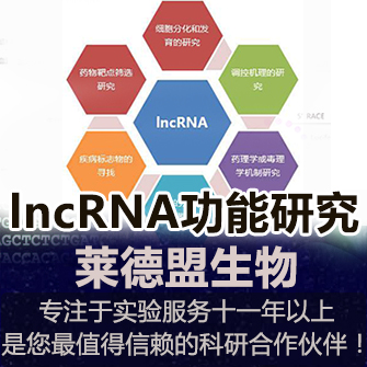 lncRNA功能研究整體解決方案