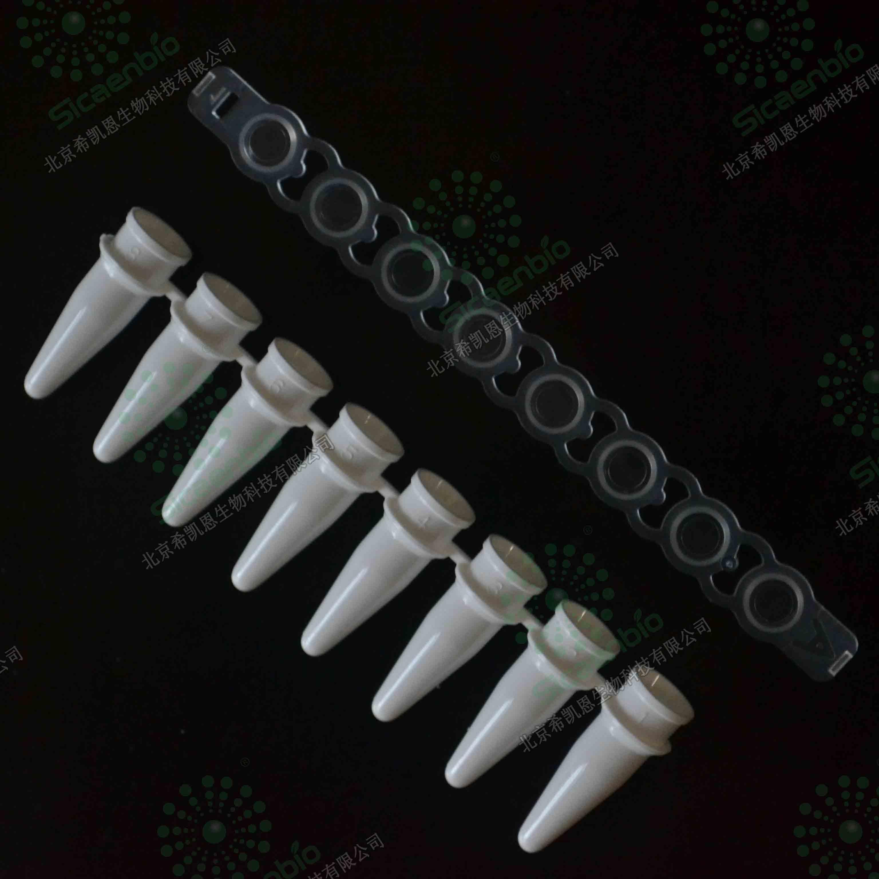 0.2ml 荧光定量qPCR 8联管 白色 PCR8连管