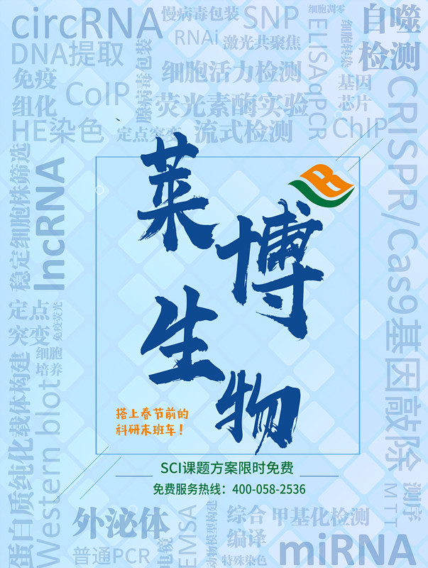 【年终钜惠】高分SCI整体解决方案