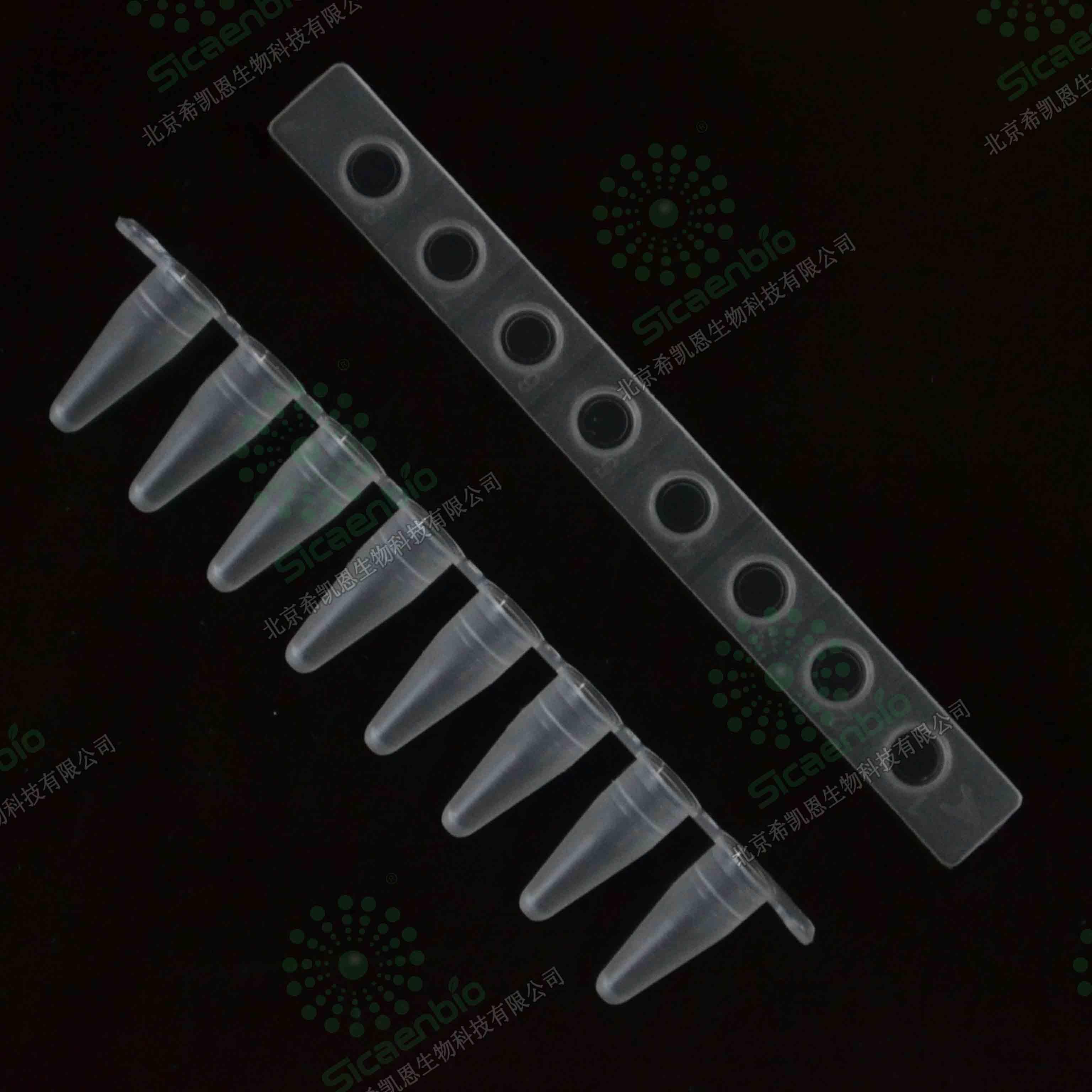 0.1ml 荧光定量PCR 8联管 磨砂 PCR8连管 ABI专用