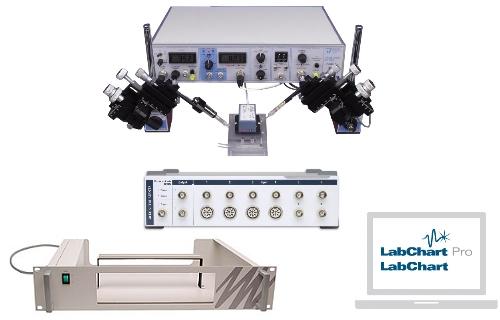 双电极电压钳(卵母细胞)系统