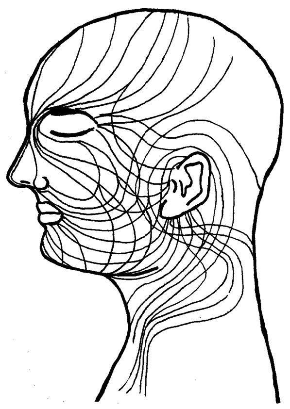 图444.jpg