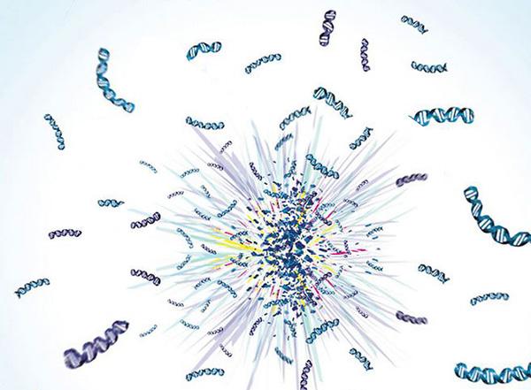 CRISPR/Cas9全基因组高通量筛选-激活筛选