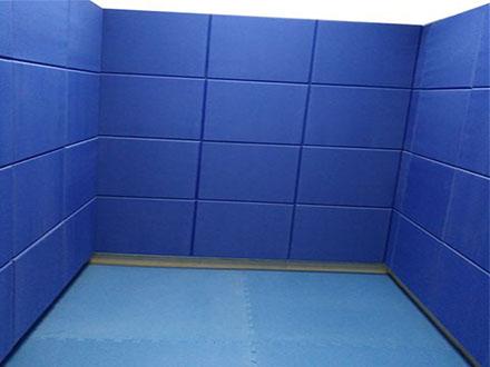 宣泄室设备宣泄墙的作用到底有多重要?