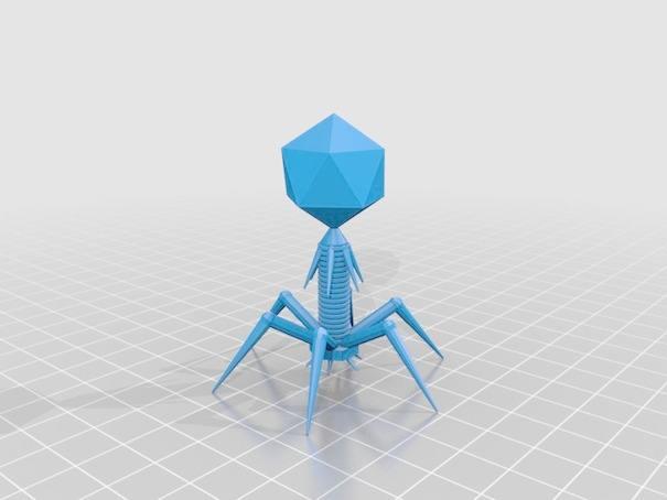 噬菌体展示