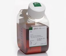 胎牛血清 Fetal Bovine Serum 10270106 现货供应