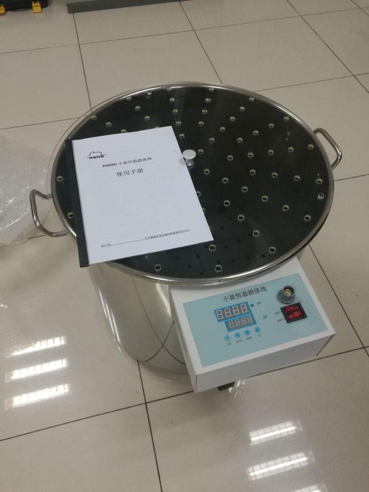 DB080型 小鼠恒温游泳池厂家