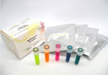 NpFlamma® HGC series肿瘤造影剂