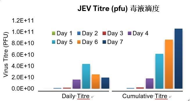 第三阶段1.JPG