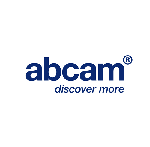 Abcam优势服务 货号:ab39753,Human DDX3 peptide