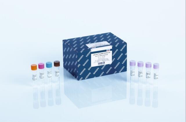类鼻疽伯克霍尔德菌PCR检测试剂盒规格
