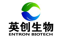 血液PCR直接扩增试剂盒