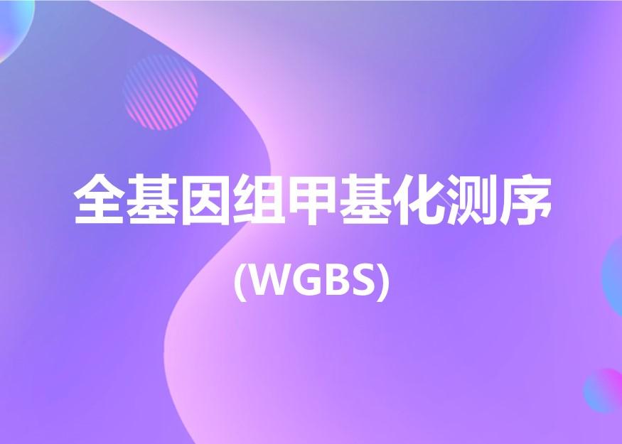 全基因组甲基化测序 (WGBS)-欧易生物