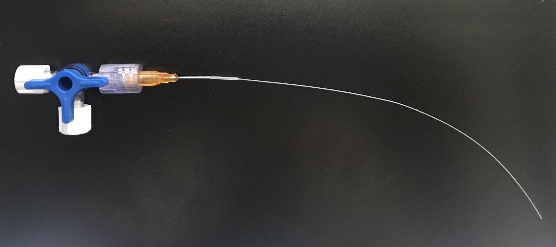 血管插管/动脉插管/静脉插管/鞘内插管/颅内插管/PE管/硅胶管