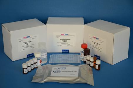 人T-复合蛋白1亚基ζ(CCT6A)酶联免疫吸附测定试剂盒图片