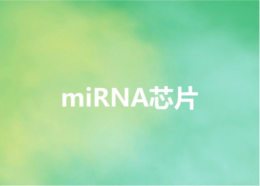 miRNA芯片-欧易生物