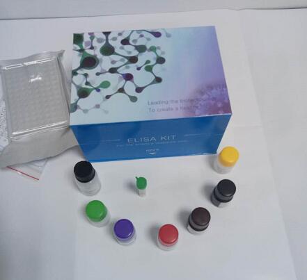 人超敏热休克蛋白70(HSP-70)ELISA试剂盒