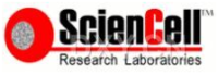 sciencell原代细胞专用培养基