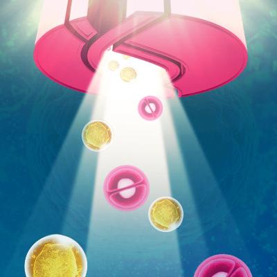 干细胞技术服务