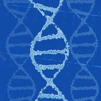 100%准确的基因合成低至5折起,更有克隆赠赠赠!