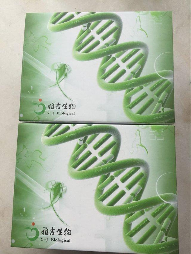 豬生長激素(GH)Elisa試劑盒