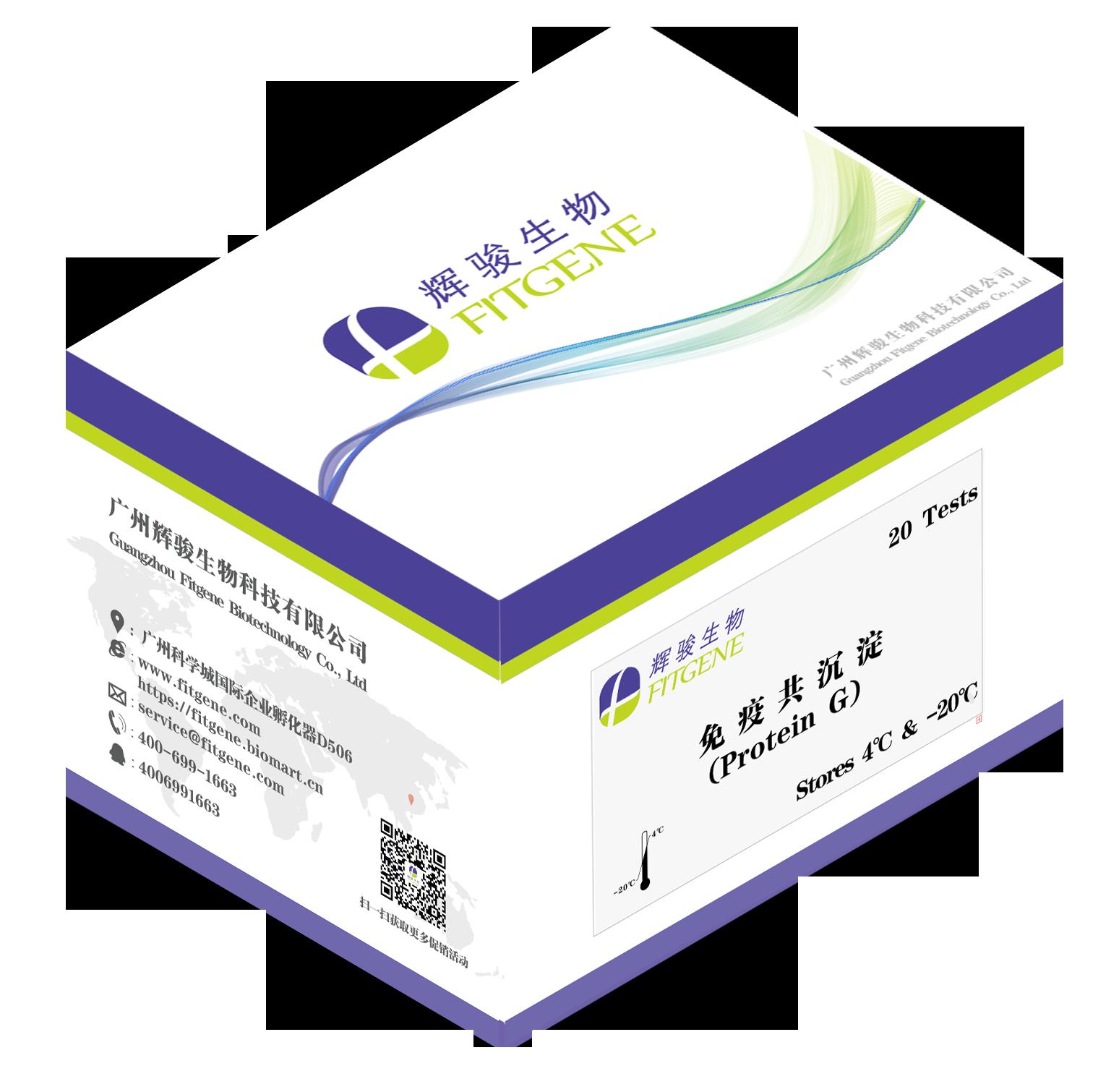 辉骏生物:免疫沉淀/免疫共沉淀试剂盒(ProteinG)