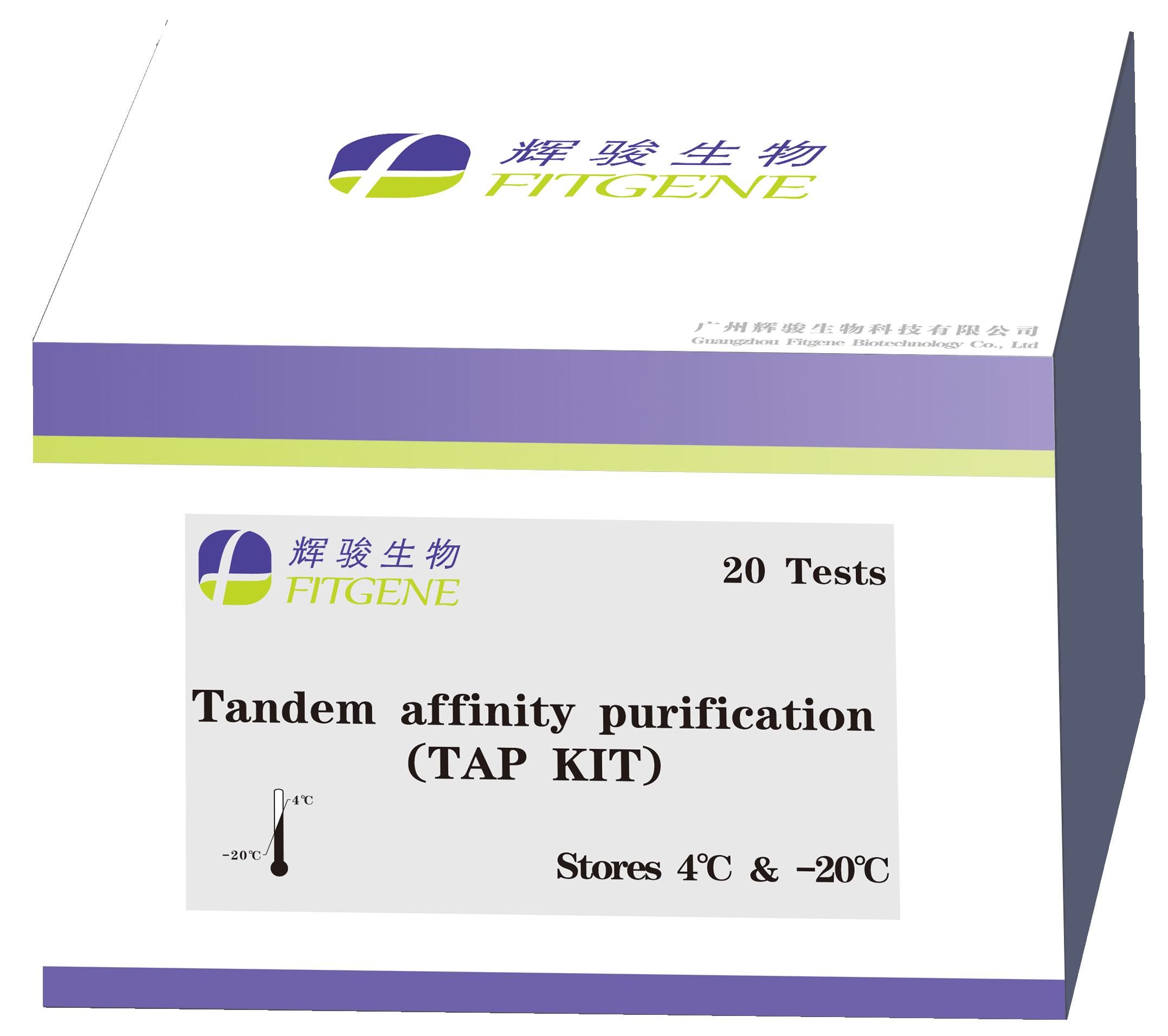 辉骏生物:Flag-TST双标签免疫沉淀/免疫共沉淀试剂盒