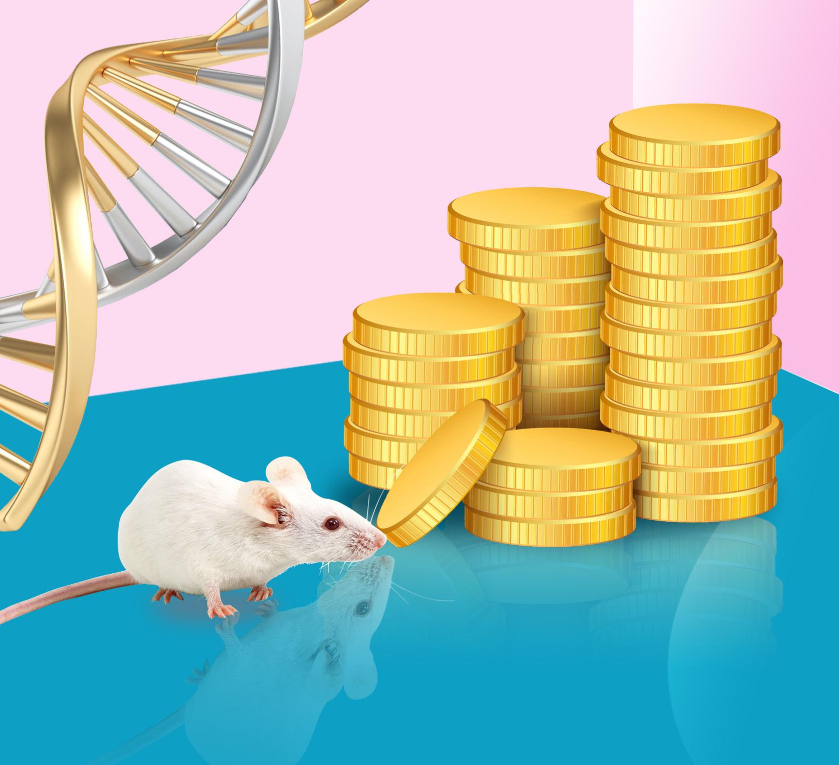 哺乳动物基因条件性表达载体质粒载体(FLEX介导)