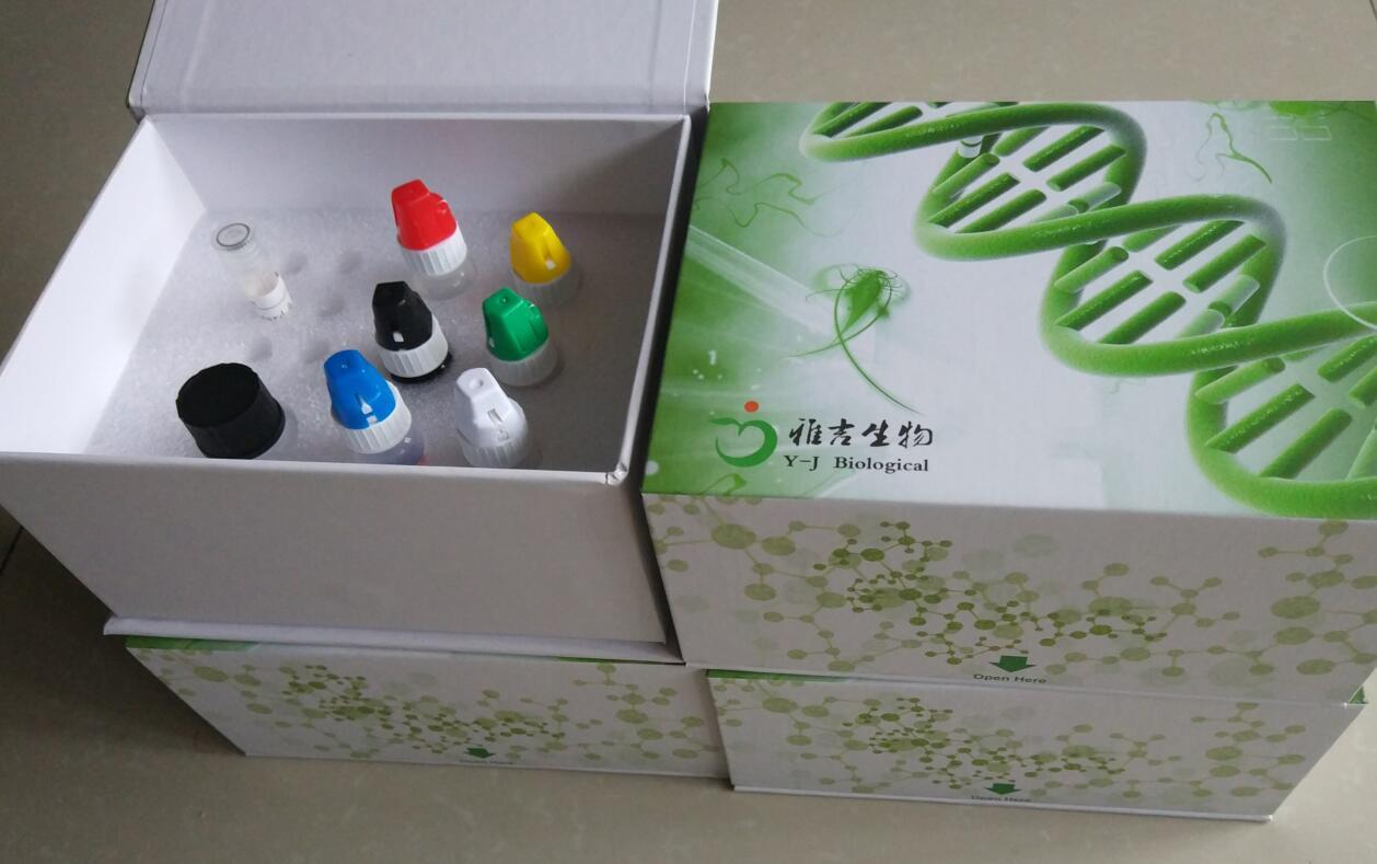 大小鼠人HSF5免疫组化试剂盒