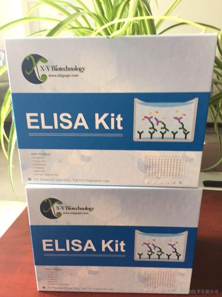 Human RAC1 ELISA Kit