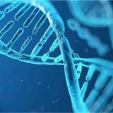 基因合成服务