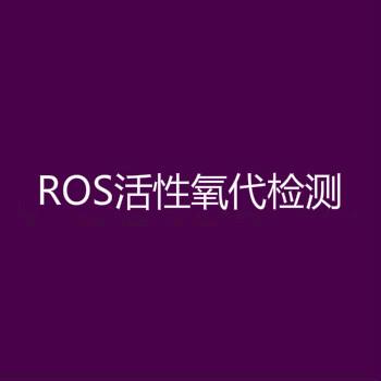 ROS活性氧代检测